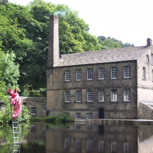 The National Trust Yorkshire